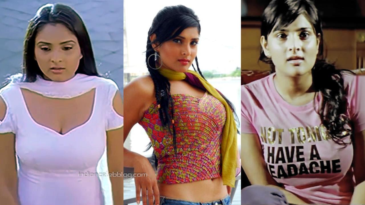 Ramya spandana kannada actress Kiccha huccha movie hot stills hd captures