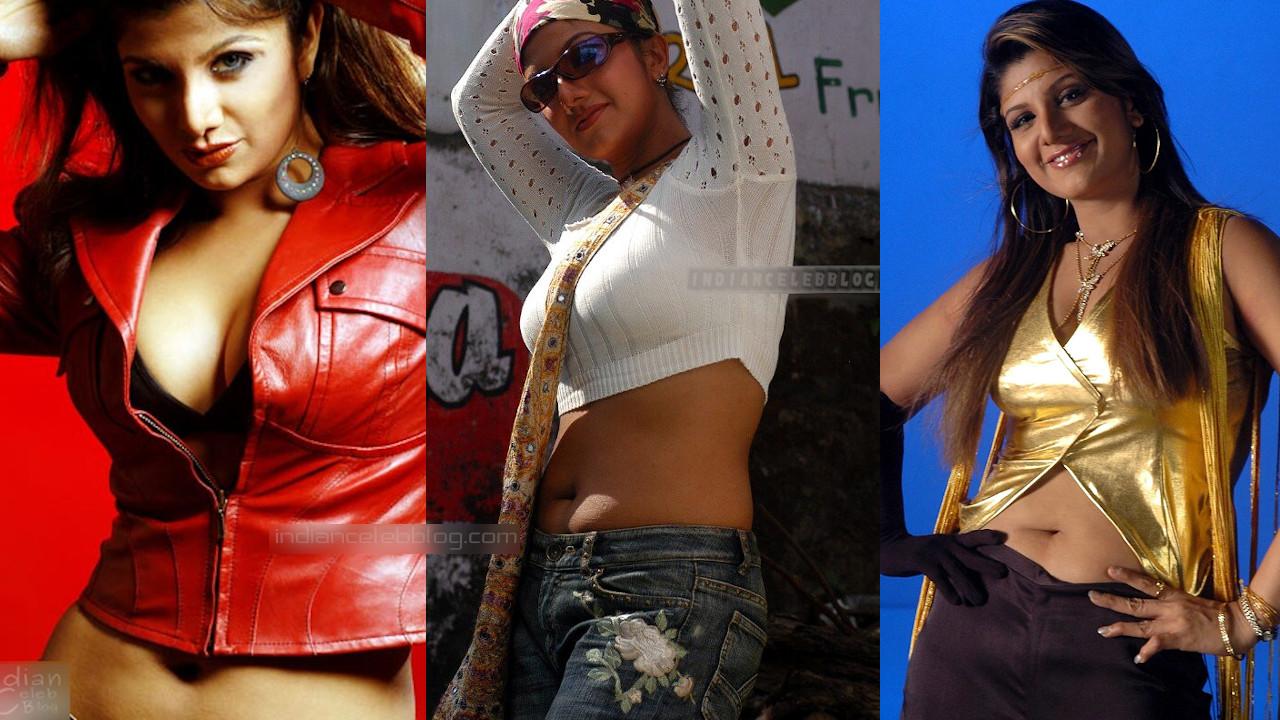 Rambha tamil yesteryear film actress hot navel show stills