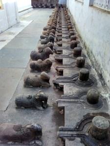 108 Mahadev Temple, Pushkar