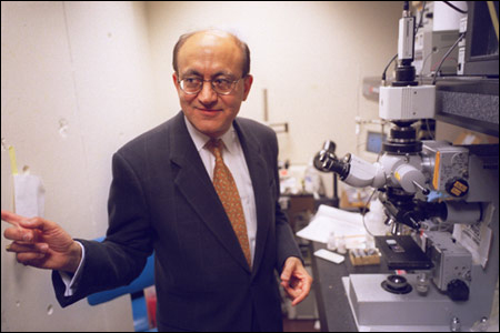 Rakesh Jain in his lab (Photo: Harvard Gazette.)