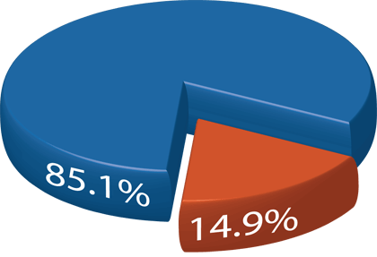 Fig 1. Percentage of male executives (blue) and female executives (orange) on executive boards at retail grocery and FMCG companies