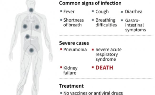 Second Travel Related Case Of 2019 Novel Coronavirus