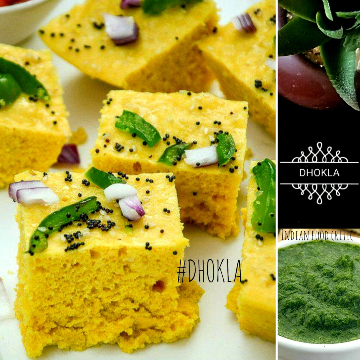 17 Dhokla Varieties | Khaman Dhokla and many more! | 4.75/5.0