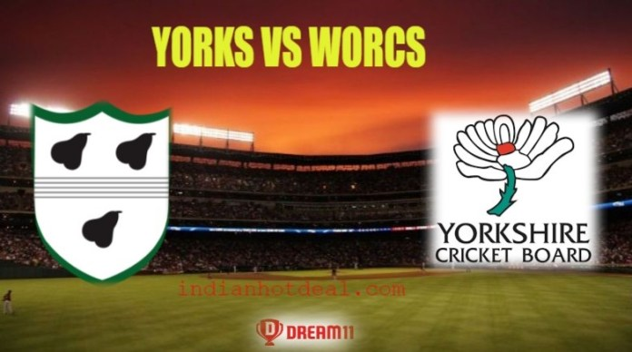 YORKS Vs WORCS Dream11 Team Prediction, English T20 Blast 2019