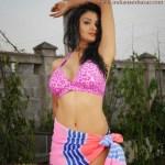 Indian house wife nude images indian bhabhi nude in Bikini 23