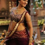 Sexy Indian girl in Blouse showing Big Boobs and Cleavage desi boobs pics hot boobs images Hot Indian Girls photos (4)