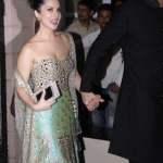 सनी लियोनी भाई की शादी में Sunny Leone Brother Wedding Pic (2)
