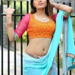 Sexy Indian girl in Blouse showing Big Boobs and Cleavage desi boobs pics hot boobs images Hot Indian Girls photos (10)