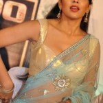 Sexy Indian girl in Blouse showing Big Boobs and Cleavage desi boobs pics hot boobs images Hot Indian Girls photos (8)