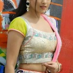 Real Life Indian Hot Girl Photo Real indian girl beauty sexy indian girls images free download (28)