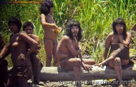 आदिवासी महिला की झोपड़ी में चुदाई कुत्ते के साथ नंगी ब्लू फिल्म पोर्न विडियो और फोटोज (11)