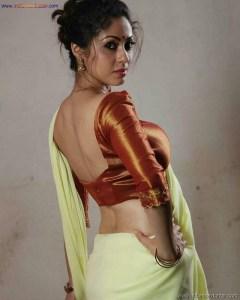 Sexy Indian Bhabhi In Saree Blouse Very Hot And Sexy Striping Saree Photos (5)