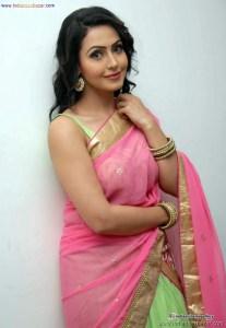 Sexy Indian Bhabhi In Saree Blouse Very Hot And Sexy Striping Saree Photos (8)