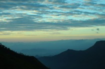 Munnar Tourist Places Pictures 13 5