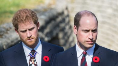 Photo of Prince William Accused Prince Harry of Placing Fame Above Loved ones