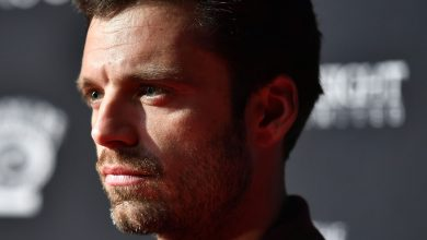 "Photo of Sebastian Stan Jokes ""Winter Soldier Will get Naked"" in New Film 'Monday'"