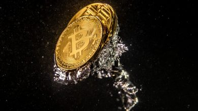 Photo of Bitcoin Wipes Out 2021 Gains—Experts Weigh in on The place It is Headed