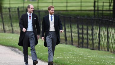 Photo of Prince William, Harry Will Meet up with in Personal Right after Diana Statue Ceremony