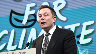 Photo of Elon Musk Sued By Tesla Shareholders for Shopping for Funds-Losing SolarCity