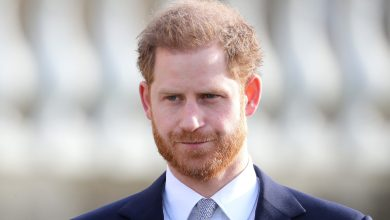 Photo of Prince Harry Privately Told Royal Household About His Memoir: Specifics