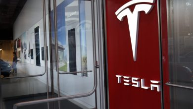 Photo of Tesla Inventory Could Leap Earlier $1,000, Claims Best Wall Street Fund Manager