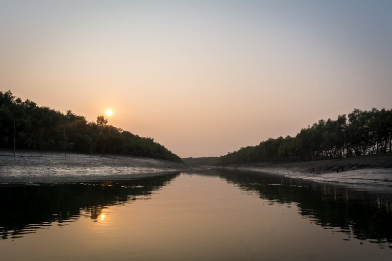 Sundarban Mangroves