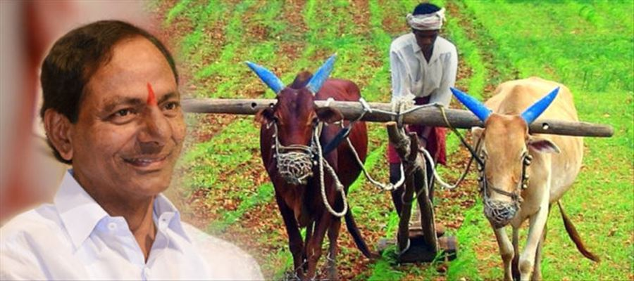 KCR Govt Releases 5100Cr Rupees For Farmers Before Elections
