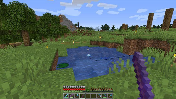 Minecraft fishing screenshot