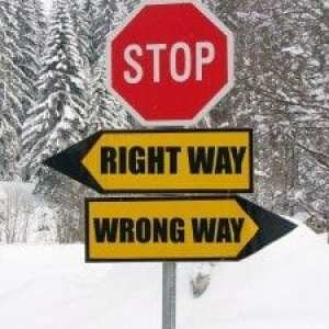 kozzi-right_and_wrong_way_road_sign_in_nature-1283x1711-225x300.jpg