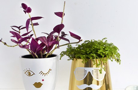 DIY His + Her Face Planters