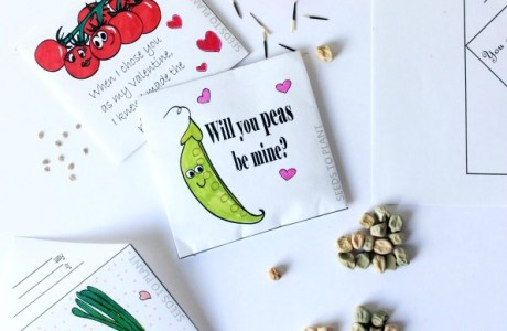 DIY Printable Seed Packet Valentines