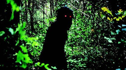 PR still from Uncle Boonmee Who Can Recall His Past Lives.