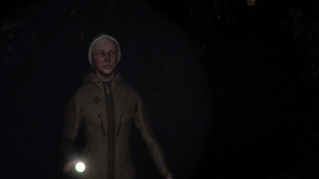Through the Woods: screenshot courtesy of Steam Greenlight