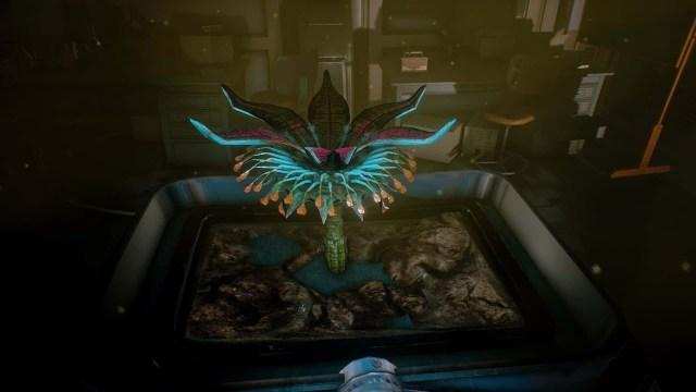 Conarium game screenshot plant