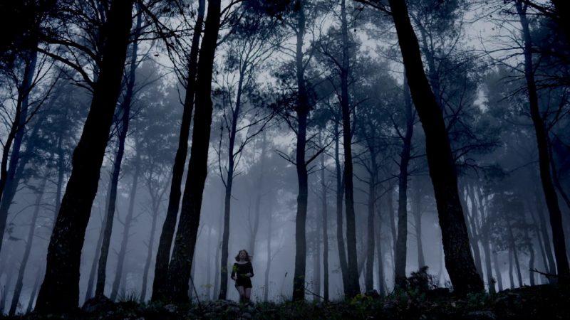 Artiness Fog