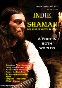Indie Shaman issue 16