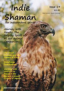Indie Shaman Issue 19 PDF