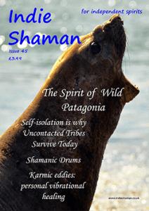 Indie Shaman magazine Issue 45