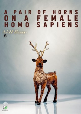 A Pair Of Horns On A Female Homo Sapiens