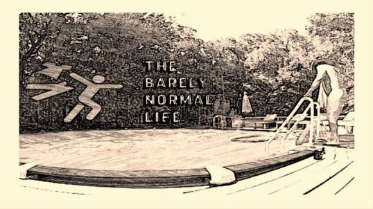 The Barely Normal Life
