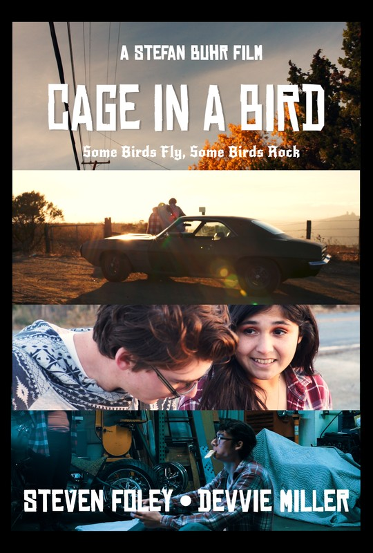 Cage in a Bird