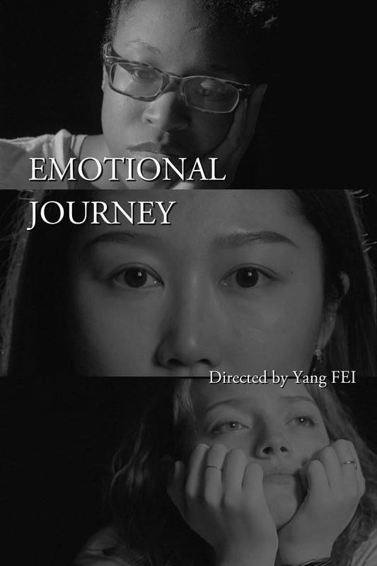 Emotional Journey