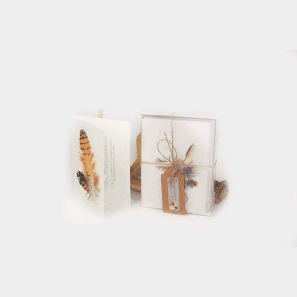 deckled edge feather cards, greeting cards, pass the feather, indigenartsy