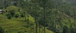 Binsar View from Dalar Village
