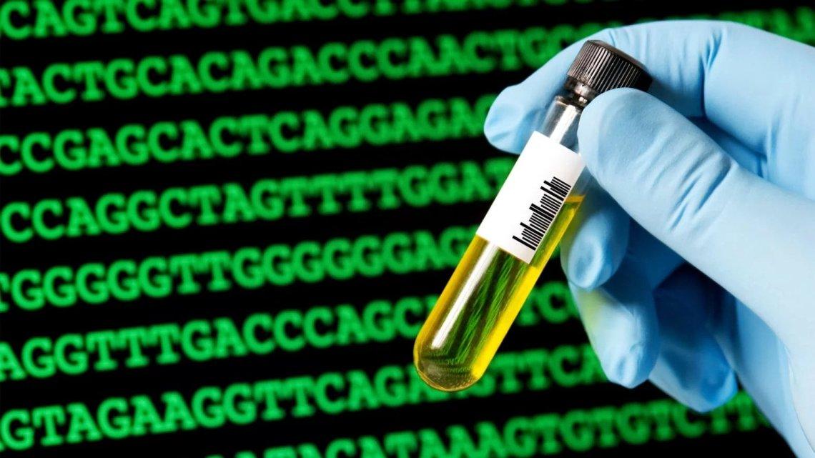 Elite-ziekenhuizen duiken in onbewezen stamcelbehandelingen