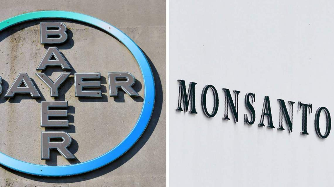 """De media hebben zich tegen Monsanto gekeerd en Bayer wordt nu geconfronteerd met een """"sneeuwbaleffect"""" van nieuwe rechtszaken van slachtoffers van Roundup (glyfosaat) blootstelling"""