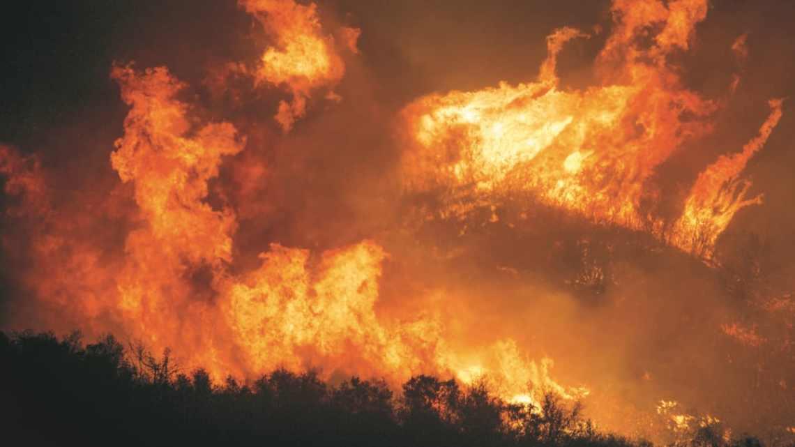 Australië: Catastrofale branden kunnen worden vermeden