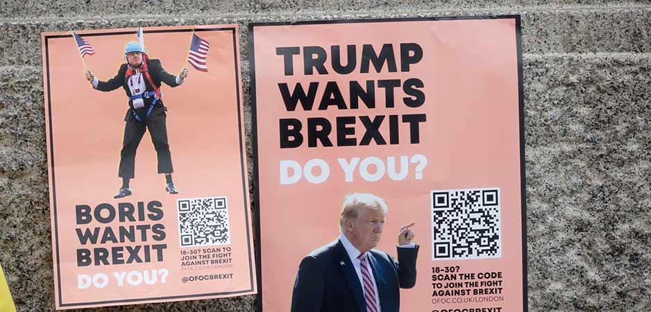 Wordt 2020 opnieuw een overwinningsjaar voor Trump en Brexit?
