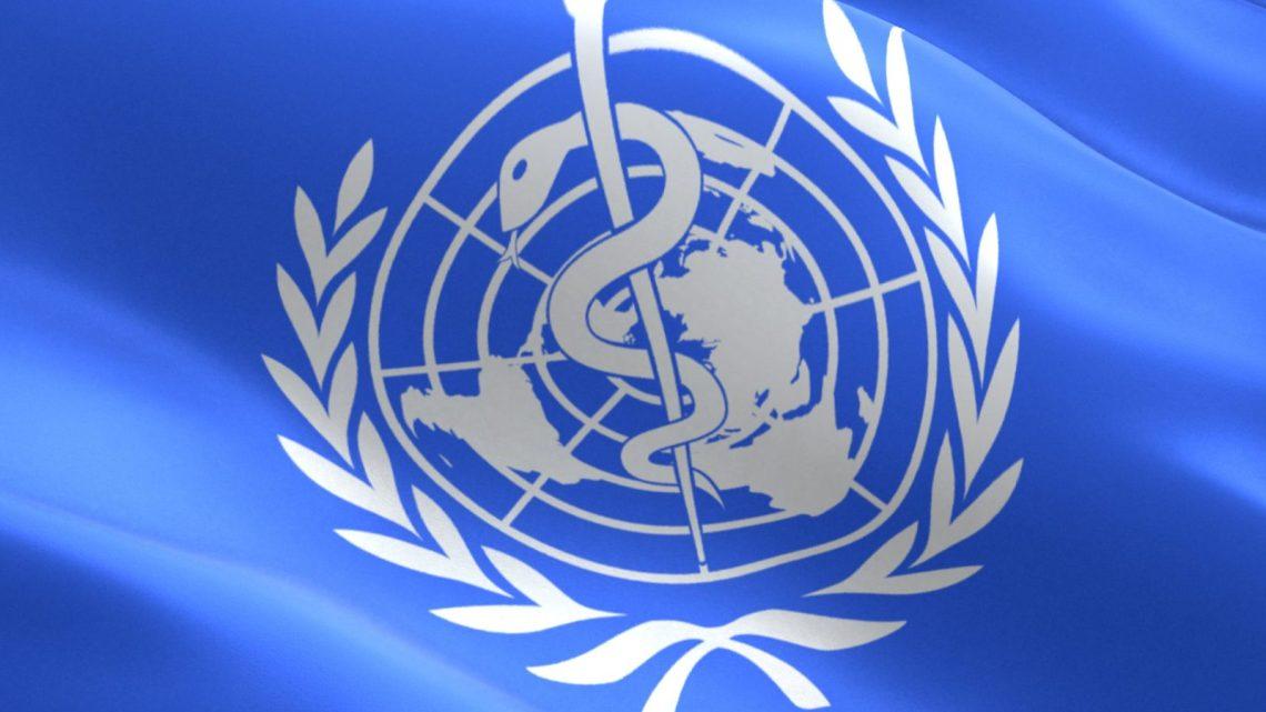 """VN-rapport dringt er bij de wereldregering op aan """"toekomstige pandemieën te voorkomen"""""""