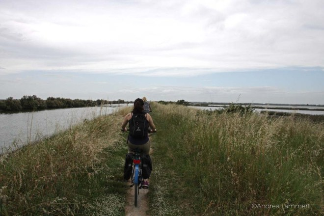 Emilia Romagna, Poebene, Radfahren